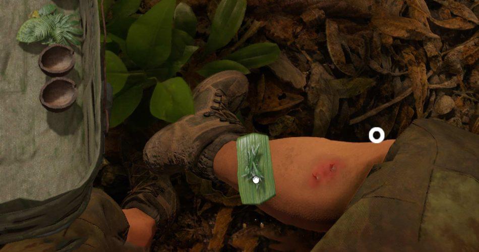 green-hell-funkien-verband-gegen-schlangenbiss
