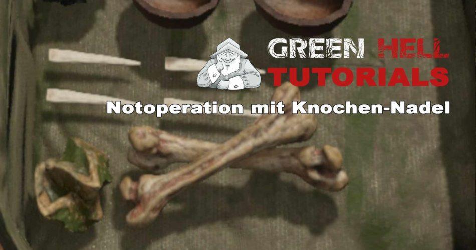 green-hell-knochen-nadel-1-2021-03